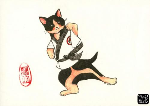 Tae Kwan Do Cat
